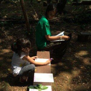 percorso-educazione-ambientale-disegnare-con-l-istruttrice5ac62ca55acb0